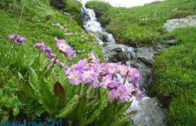 آبشار سوله دوکل ارومیه
