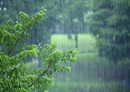 آیا در زمان آمدن باران دعاها بیشتر مستجاب می شود؟