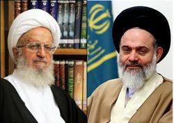 پیام تسلیت آیت الله حسینی بوشهری درپی درگذشت برادر آیت الله مکارم شیرازی