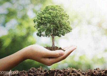 برای حفظ محیط زیست چه کارهایی انجام دهیم؟