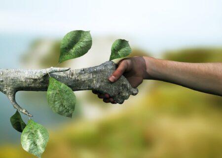 محیط زیست چرا و به چه اندازه اهمیت دارد؟